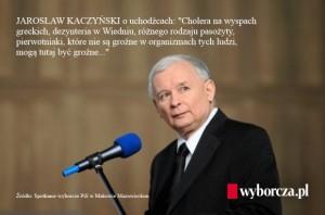 """""""...olika typer av parasiter, protozoer, vilka är oskadliga för de människorna kan här vara farliga"""" - Kaczyński om flyktingar."""